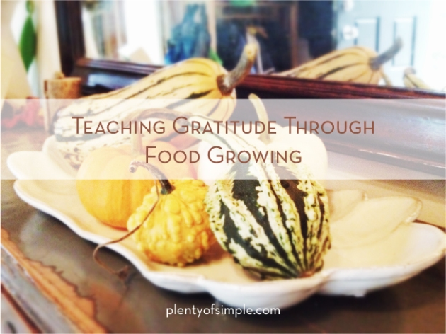 Gratitude Through Food Growing by plentyofsimple.com